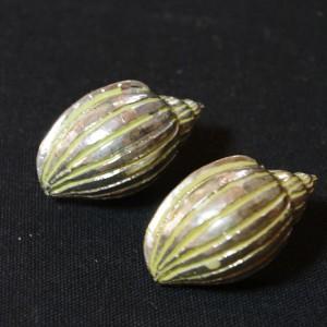 jewelry392