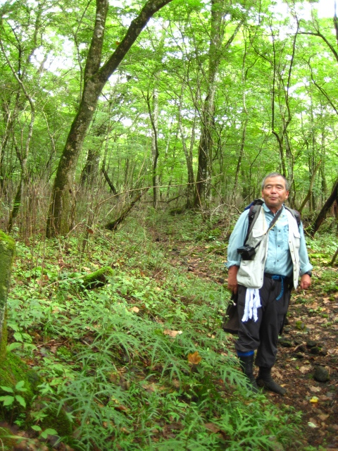村山古道 富士山