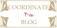 コーディネートブログ