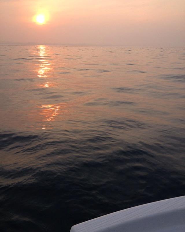 明石 蛸釣り